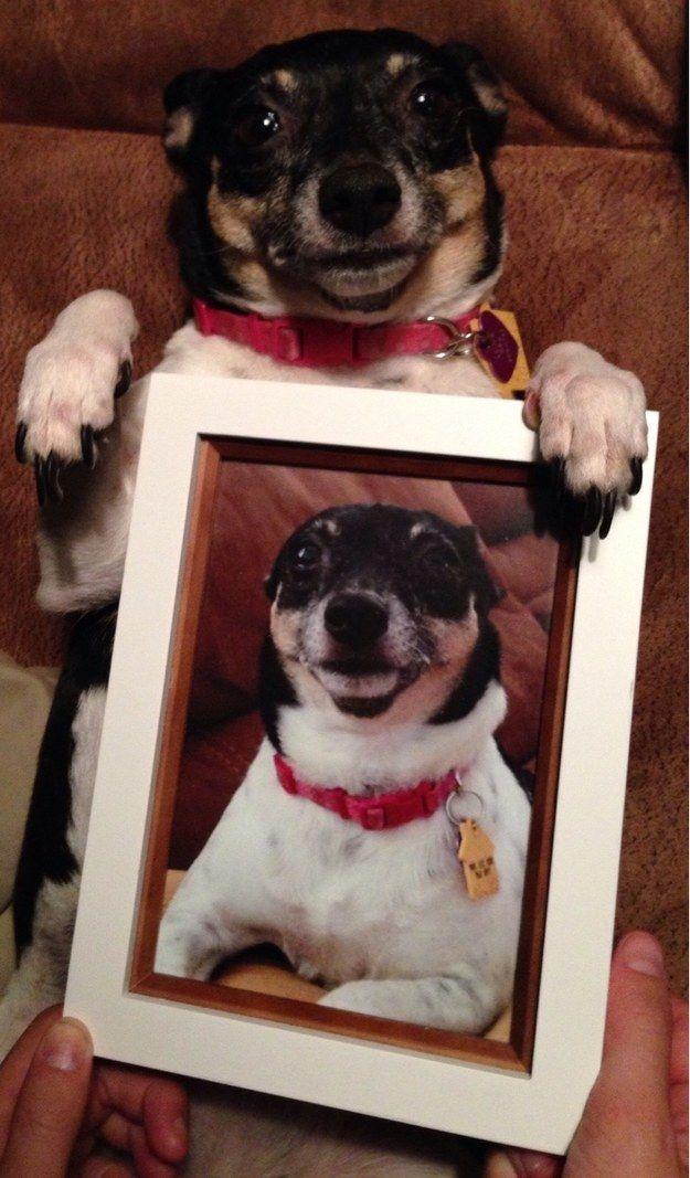 Look at me...ain't I cute!!!