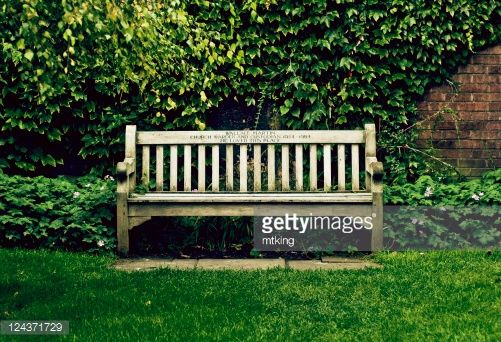 Stock Photo : Wooden bench on grass with green leafy background