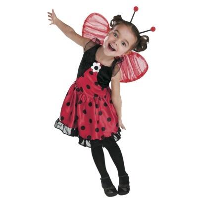 Ladybug Cotume