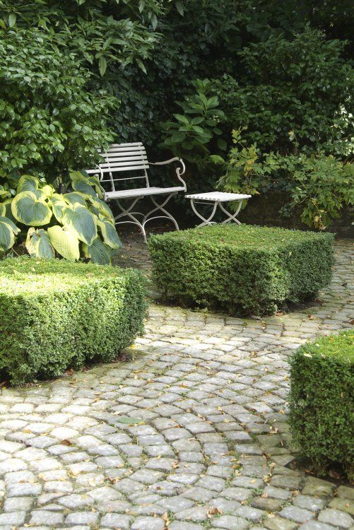 Simple garden retreat - bench tucked into a green corner of the garden with a…
