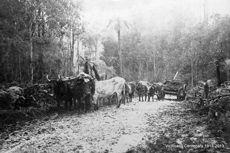 Olinda Road in 1913. VicRoads Centenary 1913-2013