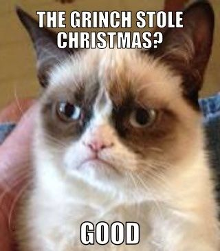 The Grinch stole Christmas?...good ~Grumpy Cat            hahaha Grumpy Cat is just soo funny!!!