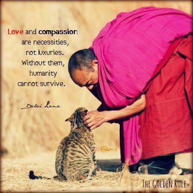 """""""Love and Compassion are necessities, not luxuries, without Compassion humanity cannot survive."""" (Dalai Lama)"""