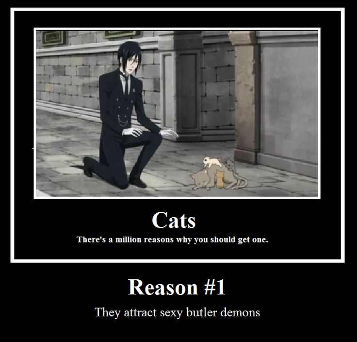 Black Butler Funny Demotivational Posters | Cats Deathnotemistress... http://amzn.to/2k2HTMQ