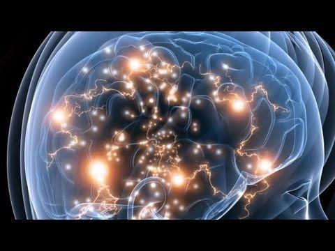 How Vaccines Harm Child Brain Development
