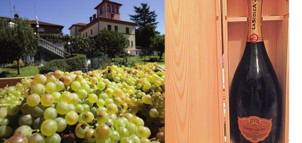 Il vino del sabato: Gocce di poesia: Millesimato D�Antan Ros� 2000 � La Scolca - Vino - World Wine Passion