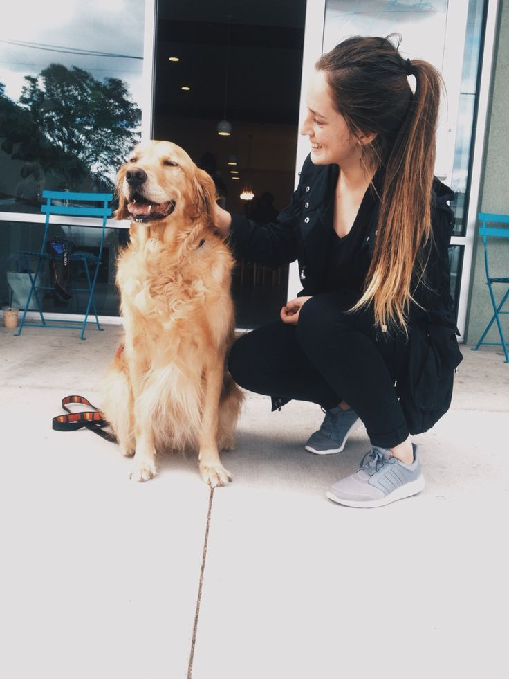 essay on dogs are the most faithful animal Dog is a faithful friend essay faithful costs essay drs essay on dogs are the most faithful animal succeed much in the wild, if a prey ears such as a dog or cat.
