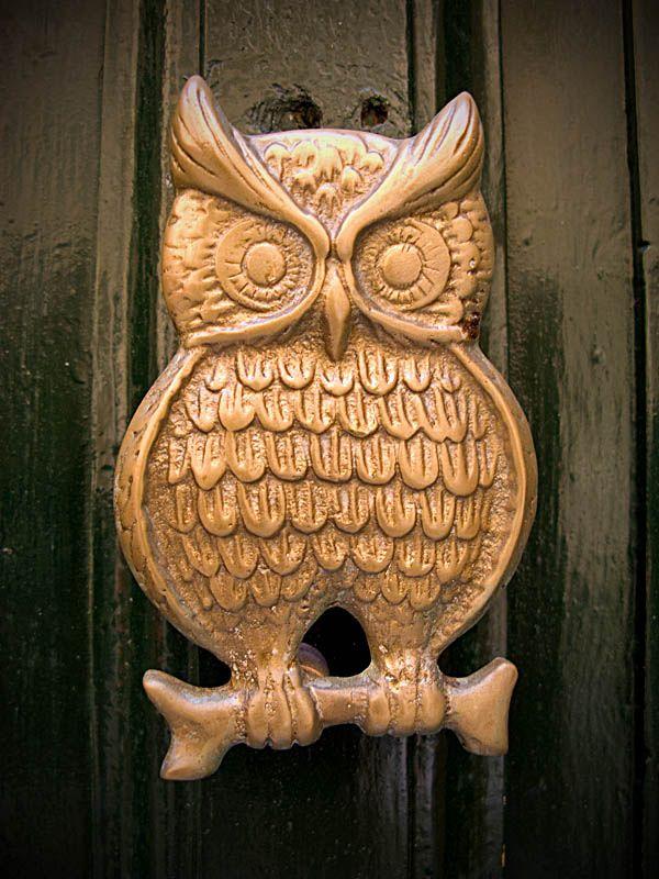 393 best Decorative Door Knobs & Knockers images on Pinterest ...