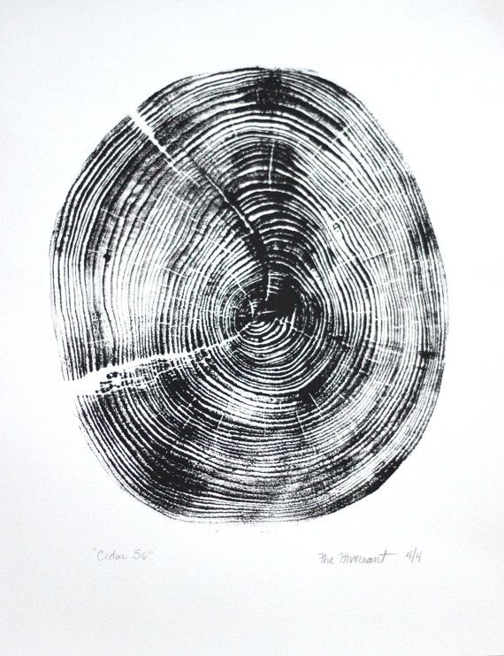 """Title: """"Cedar 56"""" - Original handpressed relief woodcut print - printmaking on heavy weight paper of tree section"""