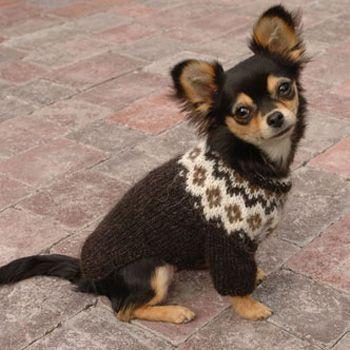 Istex strikkeopskrift på den fine trøje til de små hunde i modellen Voff. Du kan købe strikkeopskrift og garn til hundetrøjen hos Nordisk Garn.
