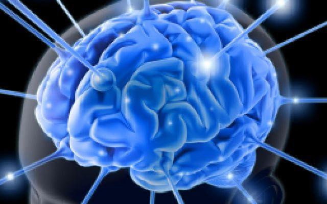 Migliorare L'Apprendimento Grazie A Delle Scosse Al Cervello #scosse #cervello #apprendimento