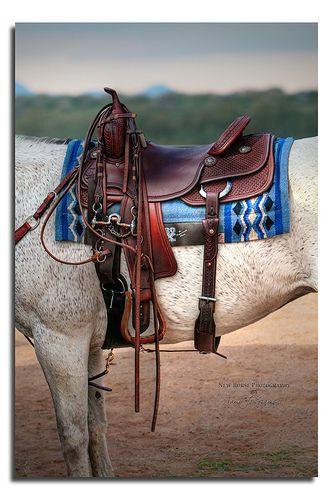 Blue Saddle Blanket, #2003