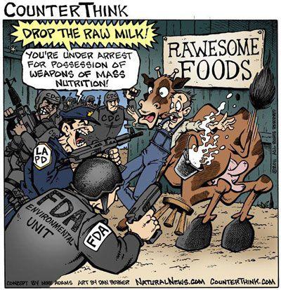 Homogenized-milk vs Raw Milk