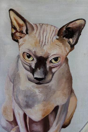 Sphynx. Cat #art #oilpainting #oil #kitten #animal #nature #sphinx #color #print #originalart #sketch #for sale #животное #сфинкс #котенок #кот #лысина #принт #природа #картина #масло