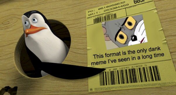 Pin By Swirly Fish On Giggle My Snizzle Memes Poor Life Decisions Dankest Memes