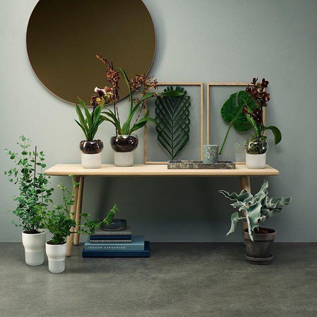 Las nuevas macetas auto-riego de Eva Solo tienen formas orgánicas y suaves.  Ideales para mantener más fácil tus plantas.  #Accesorios #Nordika #EvaSolo #HerbPot #BeOriginalBuyOriginal