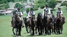 Notizie per cultura equestre