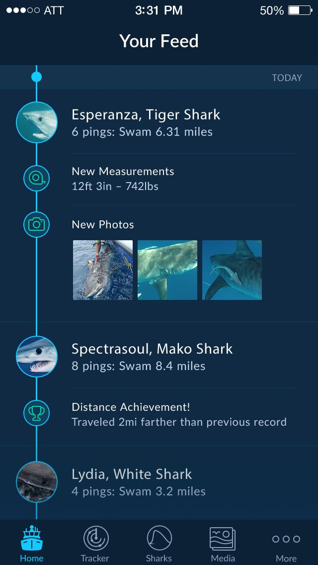 https://dribbble.com/shots/1784391-Shark-Tracker-IOS-App/attachments/292447