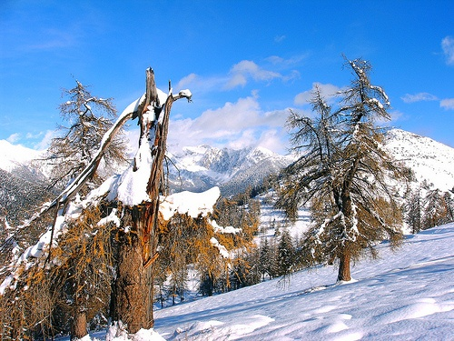La Colmiane, Alpes Maritimes, France.