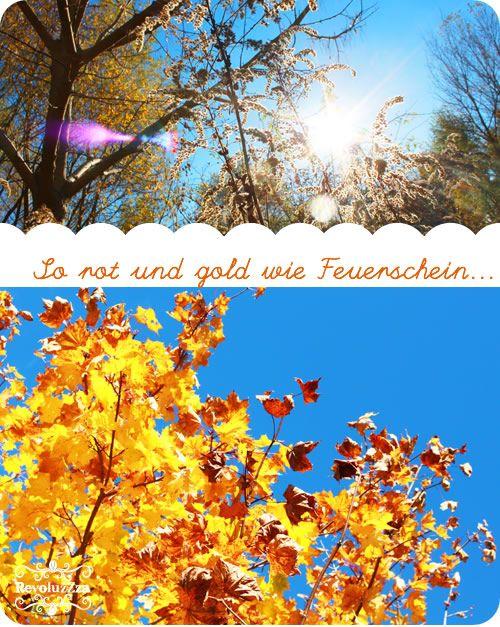 Beim+Morgenspaziergang+übten+mein+Sohn+und+ich+ein+Gedicht,+das+er+für+die+Schule+lernen+muß+–+und+fanden+es+in+jedem+Punkt+so+schön+bestätigt+in+unseren+Naturbeobachtungen.+++Oktober+Oktober+kommt+mit+blauem+Rauch,+der+Wind+will+Äpfel+pflücken,+und+gelbe+Birnen+gibt+es+auch,+und+Süßes+reift+im+Brombeerstrauch,+du+brauchst+[…]