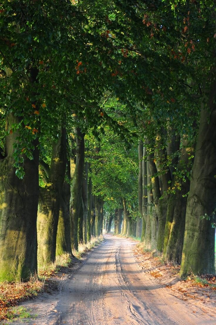 Holten, the Netherlands