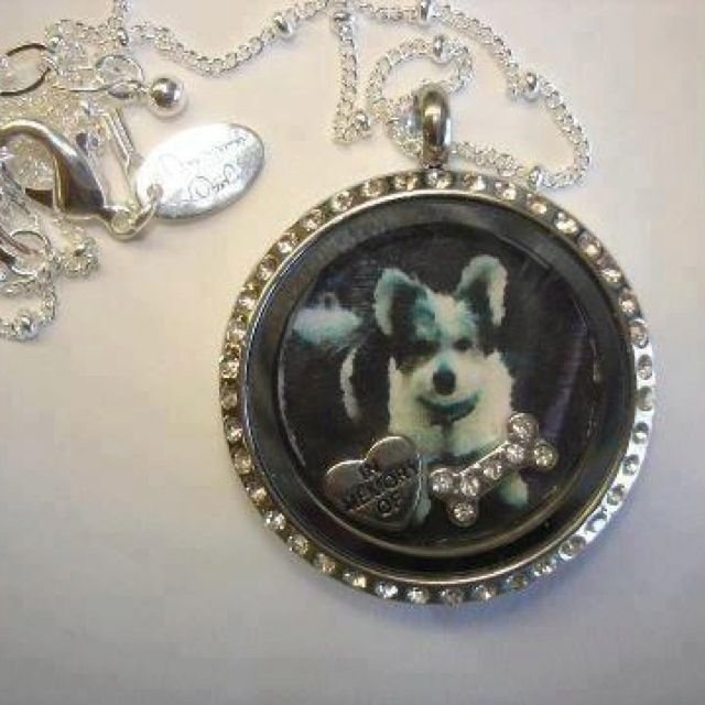 origami owl put a picture inside the locket in memory