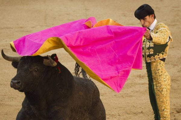The first professional bullfighter to be killed in the event in more than three decades, Victor Barrio was pronounced dead on Saturday