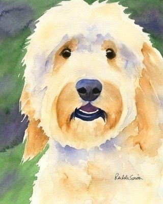 Goldendoodle dog art print from watercolor painting by Rachelle Smith plus FREE card