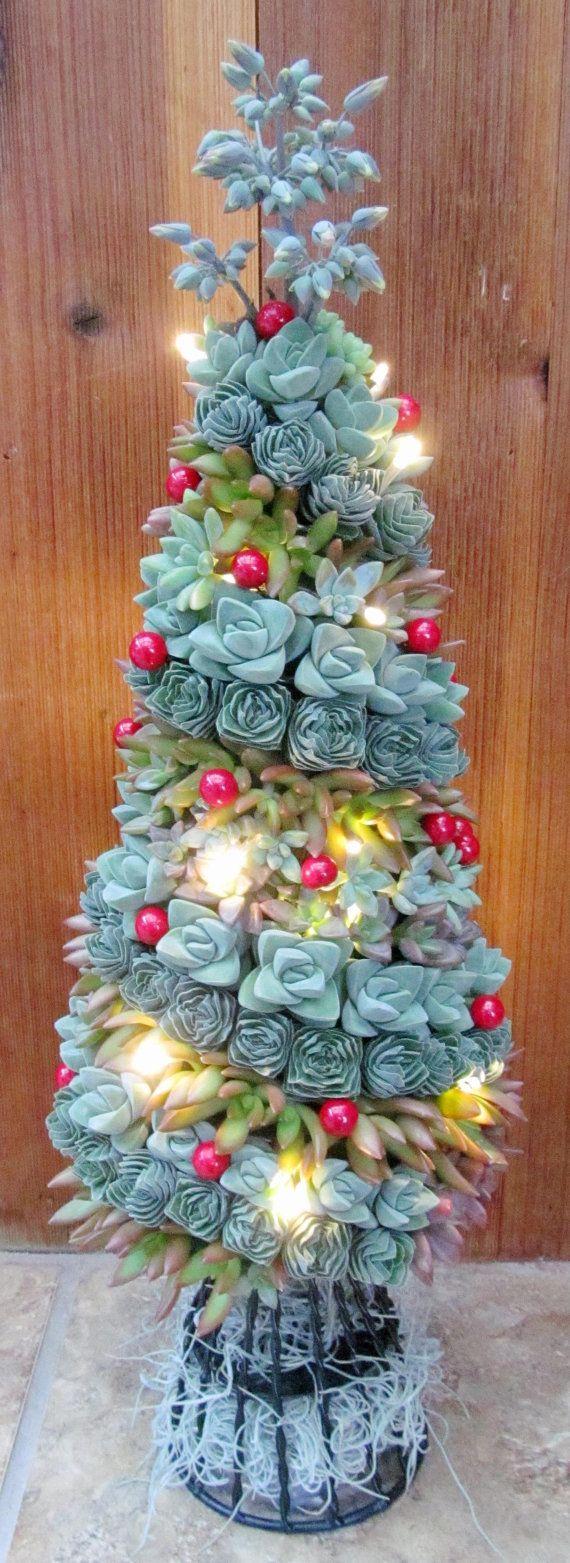 Succulentes arbre de Noël par SucculentSolutions sur @@Etsy@
