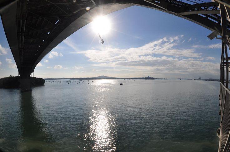 Sauter à l'élastique au soleil et au-dessus de la rivière à Auckland. Une aventure à découvrir!