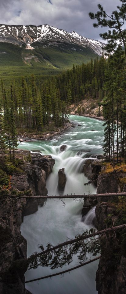 Jasper National Park, Alberta, Canada (scheduled via http://www.tailwindapp.com?utm_source=pinterest&utm_medium=twpin&utm_content=post118174847&utm_campaign=scheduler_attribution)