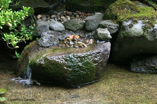 1000 images about outdoor water features on pinterest - Japanese garden water basin ...