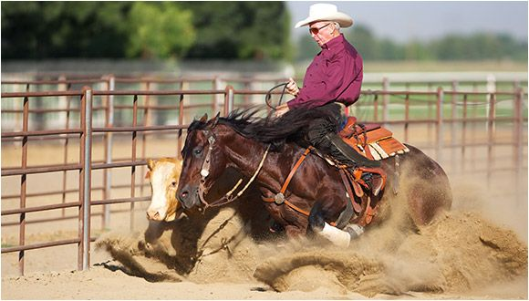 Doug Williamson and Hes Wright On at Gardiner Quarter Horses