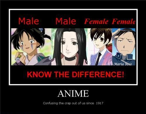 Funny Anime Meme Images : Best images about anime memes on pinterest arnold