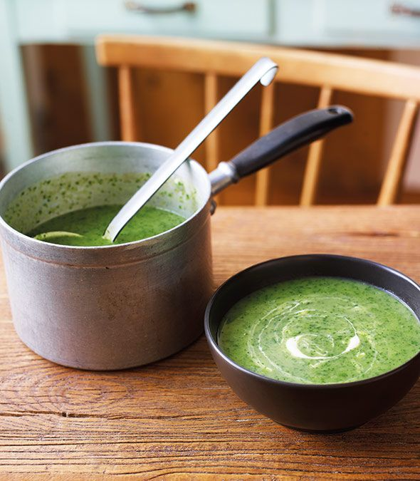 Watercress Soup Recipe (This watercress soup recipe is perfect for the spring and summer months when watercress is in season and you're craving lighter, fresher flavors. Tastes terrific hot or cold.)