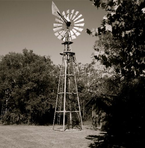 Love old windmills and black and white pictures.