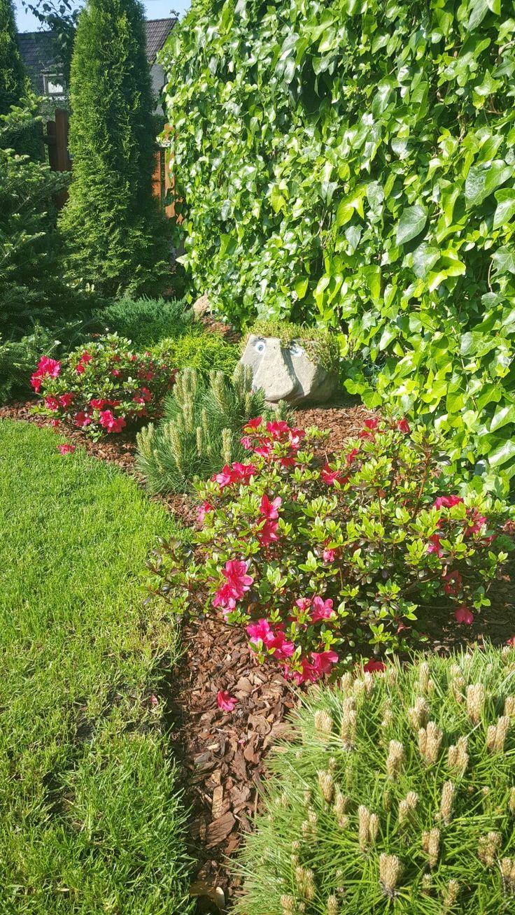 54 besten Garten und Zaun in Reihenhaus Bilder auf Pinterest ...