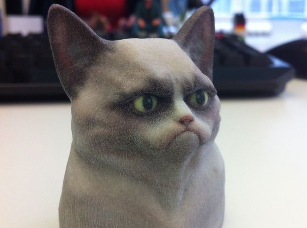 Grumpy Cat Bust 3d printed Desk Toys Memes Picture from mboylevt - Shapeways