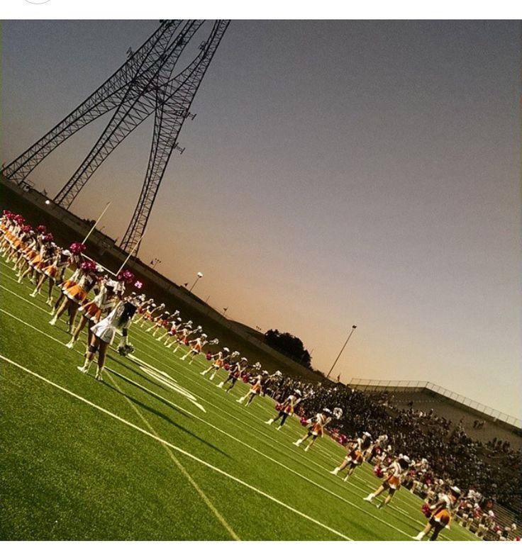 West Mesquite High School 2014-2015 Lariettes