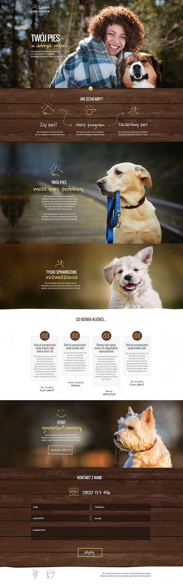 Caniss dog trainers - nice and simple website design.