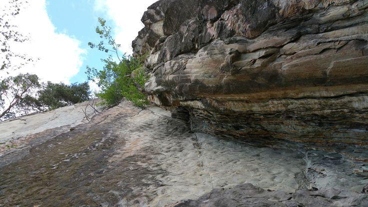 Piatra Pinului, Gura Humor. Aici au fost gasite urmele unui schelet de peste, ce a trait in marile care acopereau Bucovina acum 30 milioane de ani...