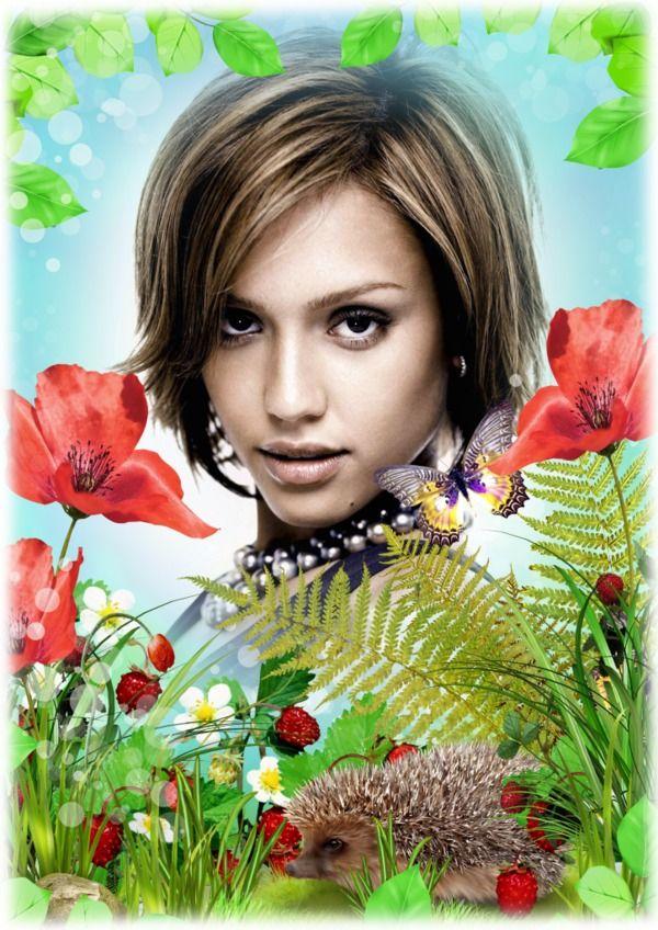 Fotomontaggio Hedgehog e farfalla in natura - Pixiz
