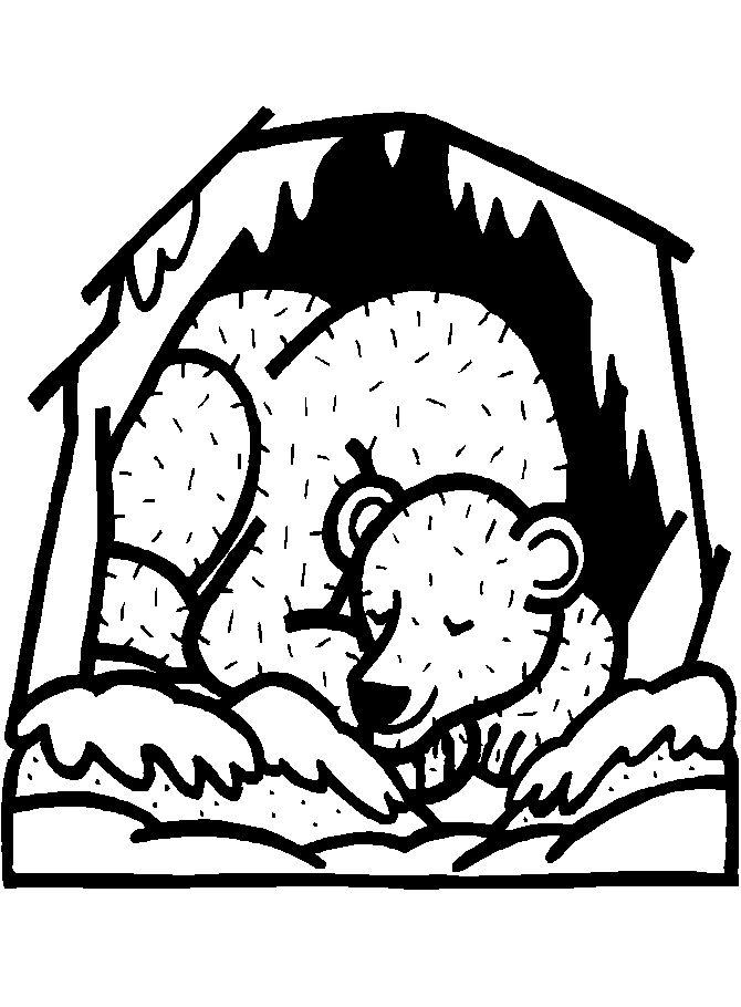 Hibernating Bear Colouring Page