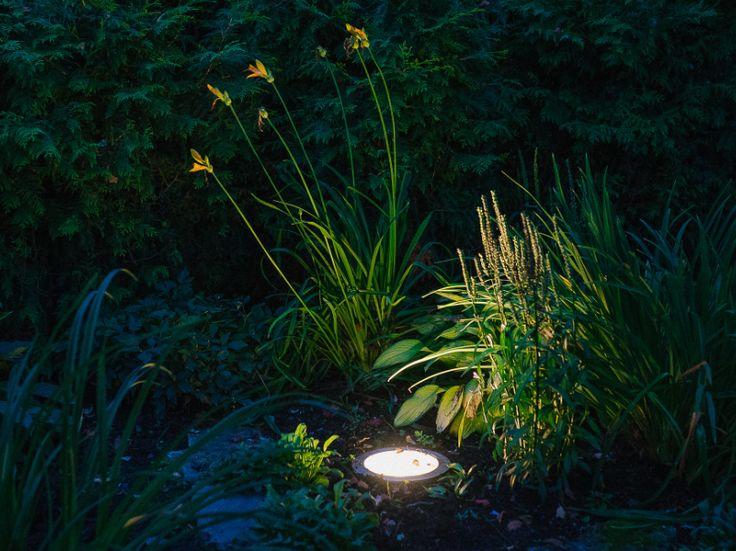 #Garden #lighting #design by Belisama Lighting and the lighting designer Kamil Akhmedov