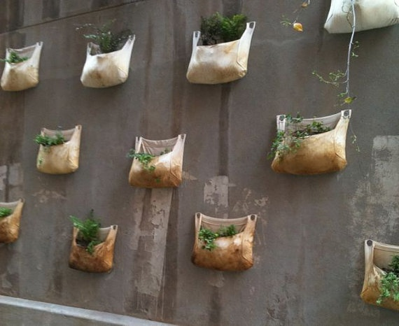Love These Canvas Bags For Growing Plants On Your Walls. Clever :)