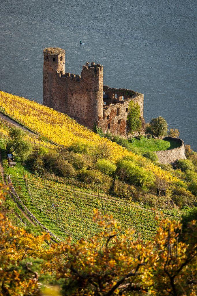 Ehrenfels Castle - Hessen - Germany (von LuxTonnerre)