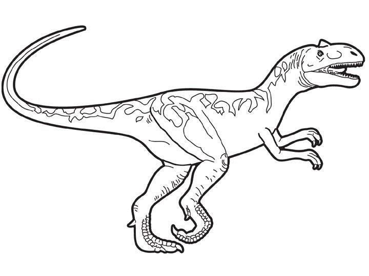 Velociraptor Para Colorear Coloring Pages Dinosaur Tattoos Coloring Books