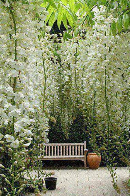 Love this.... Hanging flowers and a bench to admire them.