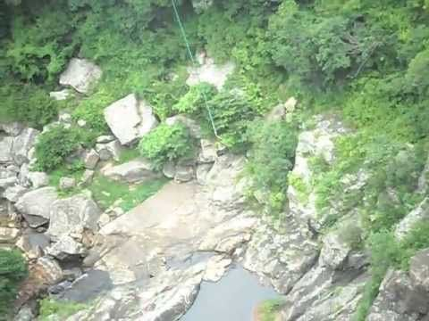 #epic video - insane cliff jump flips done on the #WildSwing at @Wild5Adventures #OribiGorge VISIT OUR WEBSITE FOR MORE INFO. LINK IN BIO #MeetSouthAfrica
