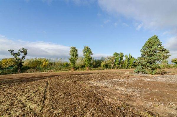 3.77 Acres @, 155 Ballynahinch Road, Lisburn #northernireland #propertynews #landandside